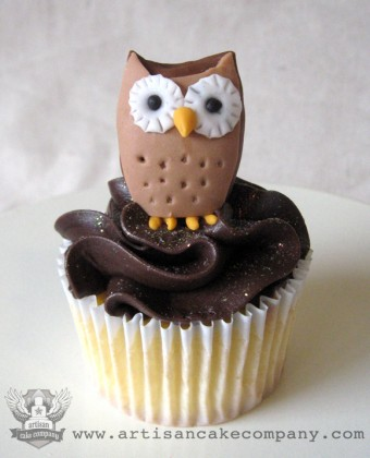 Yellow Cupcake with Chocolate Fudge Buttercream and Fondant Owl Topper