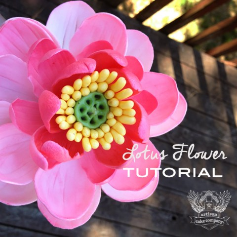 Lotus Flower Tutorial